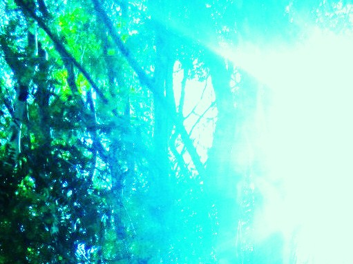 sunlight through my heart-streams