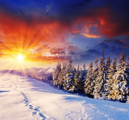 winter_landscape_highdefinition_picture_166135