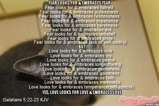 fear-vs-love