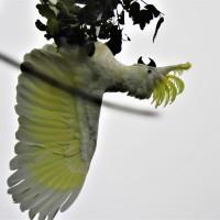 Beautiful Nature Photography 2